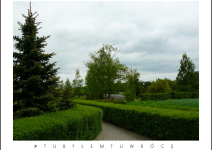 Alejka w Budziejewku - zdjęcie nadesłane przez Urząd Gminy Mieścisko