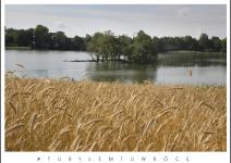 Jezioro Kruchowskie w gminie Trzemeszno. Zdjęcie nadesłane przez Urząd Miejski Trzemeszna