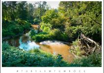 Meandry rzeki Swędrni. Zdjęcie nadesłane przez Urząd Gminy Koźminek