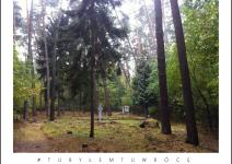 Mogiły zbiorowe w Lesie Palędzko-Zakrzewskim - zdjęcie nadesłane przez Urząd Gminy Dopiewo
