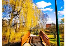 Park Przyjaźni w Kaliszu - zdjęcie nadesłane przez Urząd Miasta Kalisza