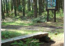Ścieżka przyrodniczo-edukacyjna Koźlanka - zdjęcie nadesłane przez Urząd Gminy Mieścisko