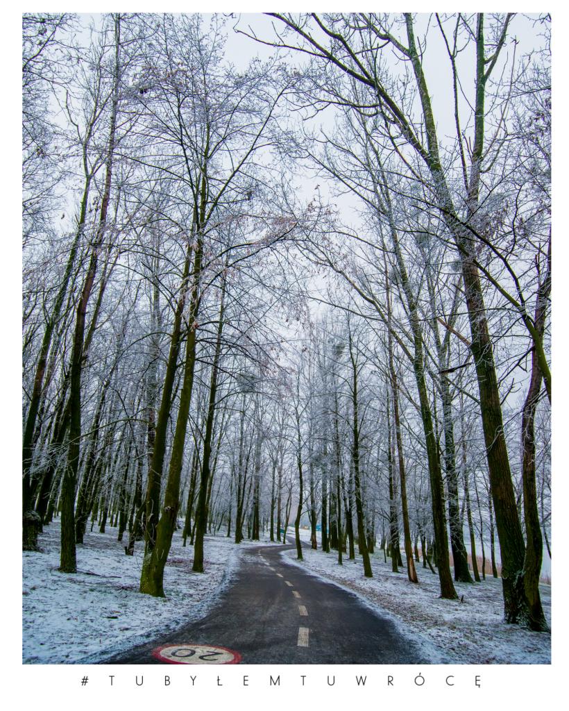 Ścieżka rowerowa wokół jeziora Średzkiego - zdjęcie nadesłane przez UM w Środzie Wlkp.