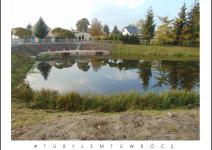 Staw w Mirkowicach - zdjęcie nadesłane przez Urząd Gminy Mieścisko