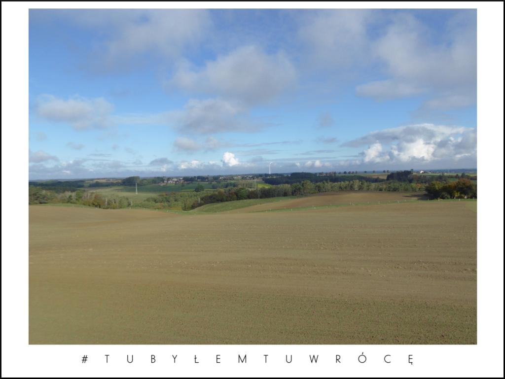 Widok z wieży widokowej w Dusznie - gmina Trzemeszno. Zdjęcie nadesłane przez Urząd Miejski Trzemeszna