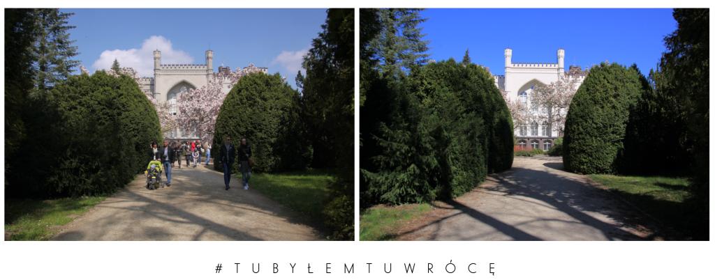 Zamek w Kórniku - zdjęcie nadesłane przez Arboretum Kórnickie