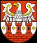 Powiat międzychodzki